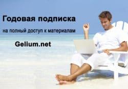 Годовая подписка Gelium.net