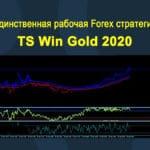 Единственная рабочая Forex стратегия TS Win Gold 2020