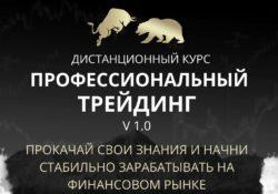 Профессиональный трейдинг V 1.0 Владимир Кузнецов
