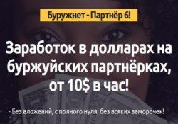 Буружнет-Партнёр 6. Заработок в долларах Игорь Величко