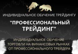 Индивидуальное обучение профессиональному трейдингу Владимир Кузнецов]