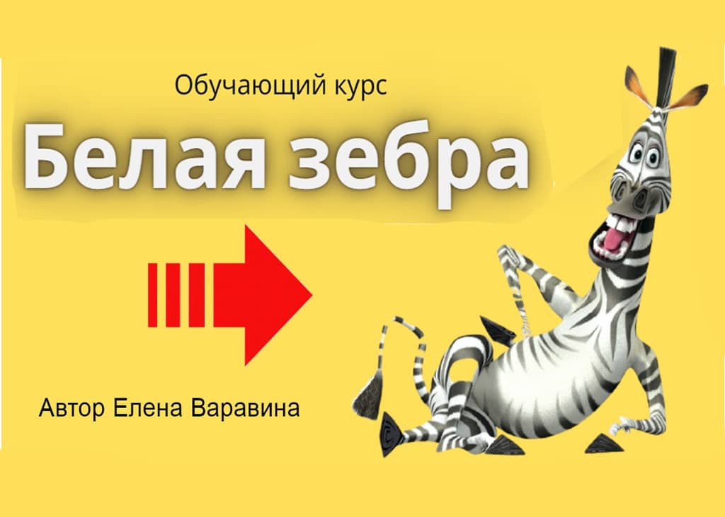 Курс Белая зебра