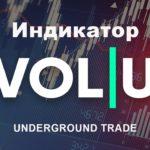 Индикатор VOL | U (2021) [UTradinG]
