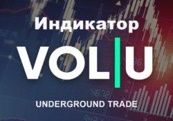 Индикатор VOL U 2021 UTradinG