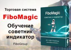 Обучение по торговой системе FiboMagic + советник и индикатор FiboGroup