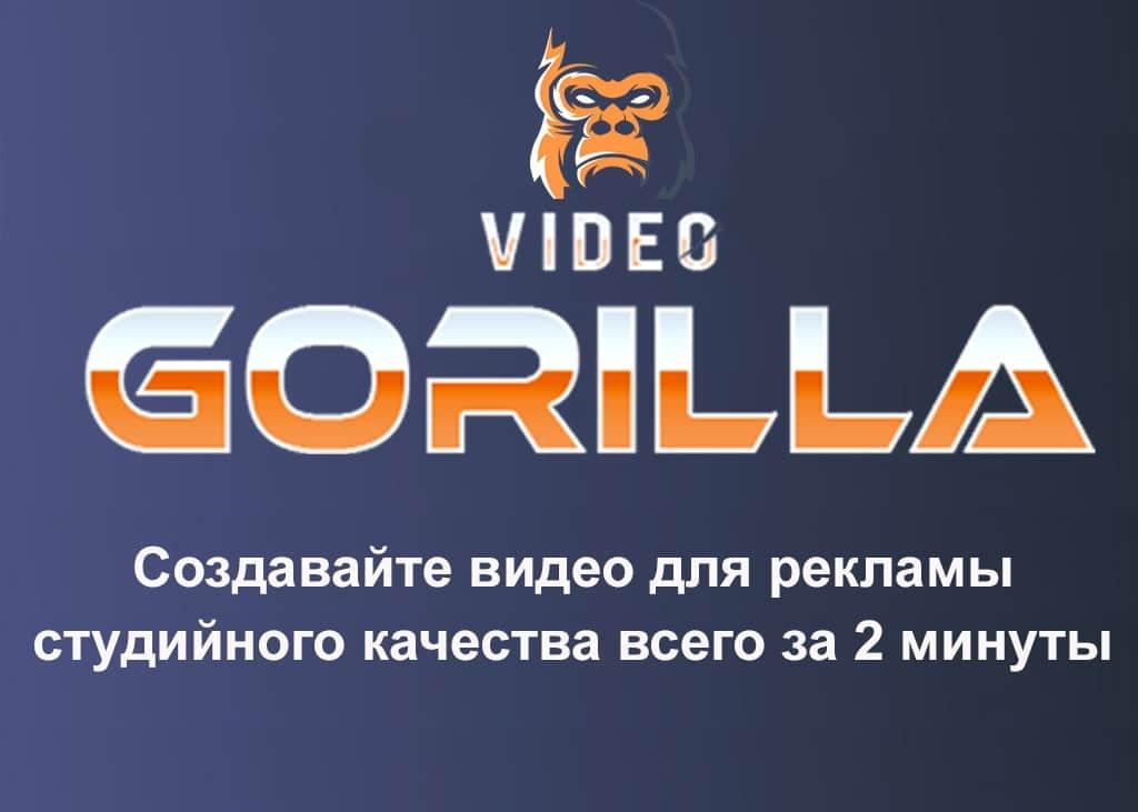 VIDEO GORILLA Михаил Иванов